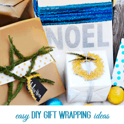 Easy DIY Gift Wrapping Ideas thumbnail