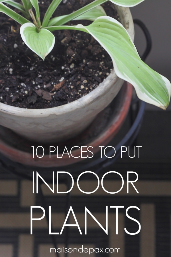 small pot on stand with overlay: 10 places to put indoor plants | Maison de Pax
