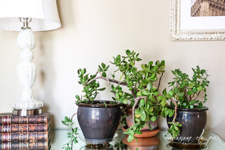 Click For 10 Ideas Of Places To Put Indoor Plants Via Maisondepax