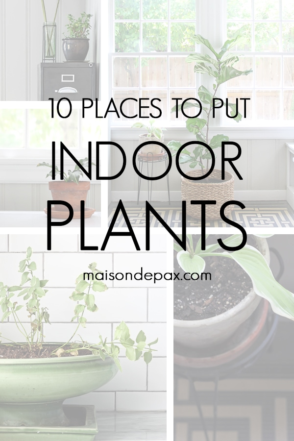 various indoor plants with overlay: 10 places to put indoor plants | Maison de Pax