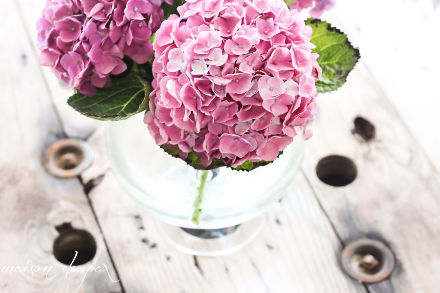 vase full of hydrangeas- Maison de Pax
