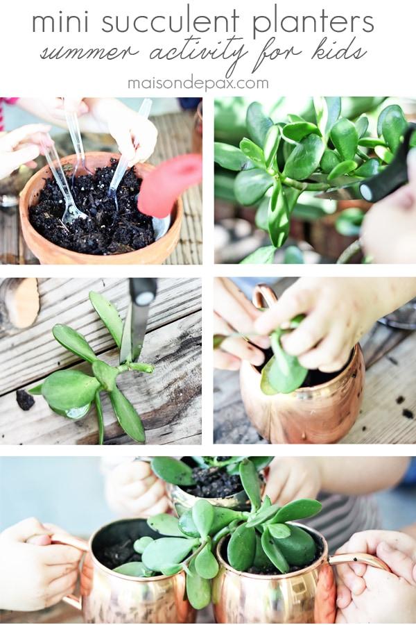 Mini succulent planters- Maison de Pax