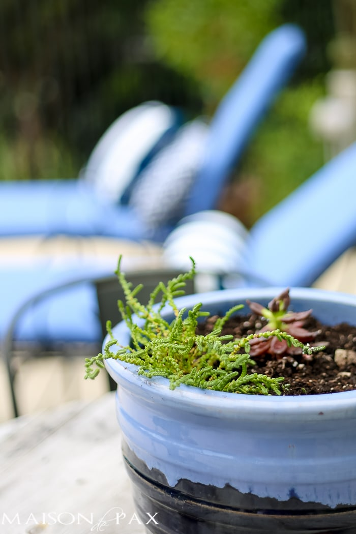 Outdoor Decorating Tips: bring color with ceramic pottery