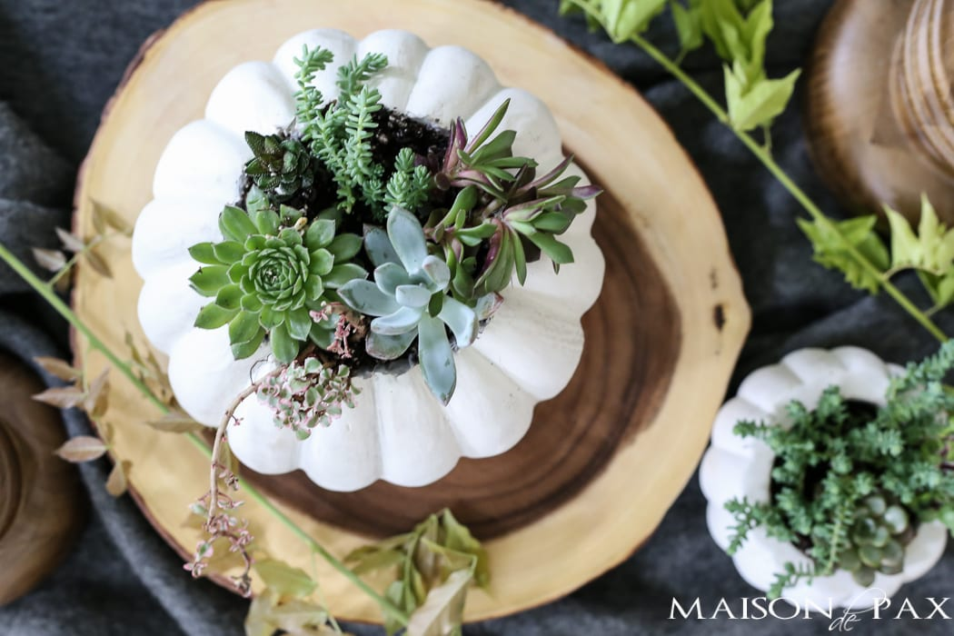 White pumpkin carved out with a variety of succulents- Maison de Pax