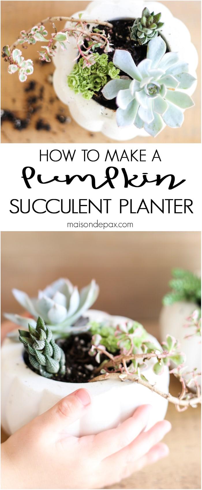 Easy Pumpkin Succulent Planters- Maison de Pax