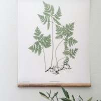 DIY Botanical Hanging and A Touch of Farmhouse Charm