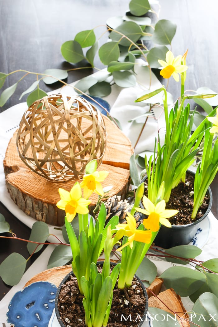 gorgeous, natural spring centerpiece!