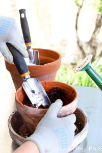 5 Best Gardening Tools (all available on Amazon)