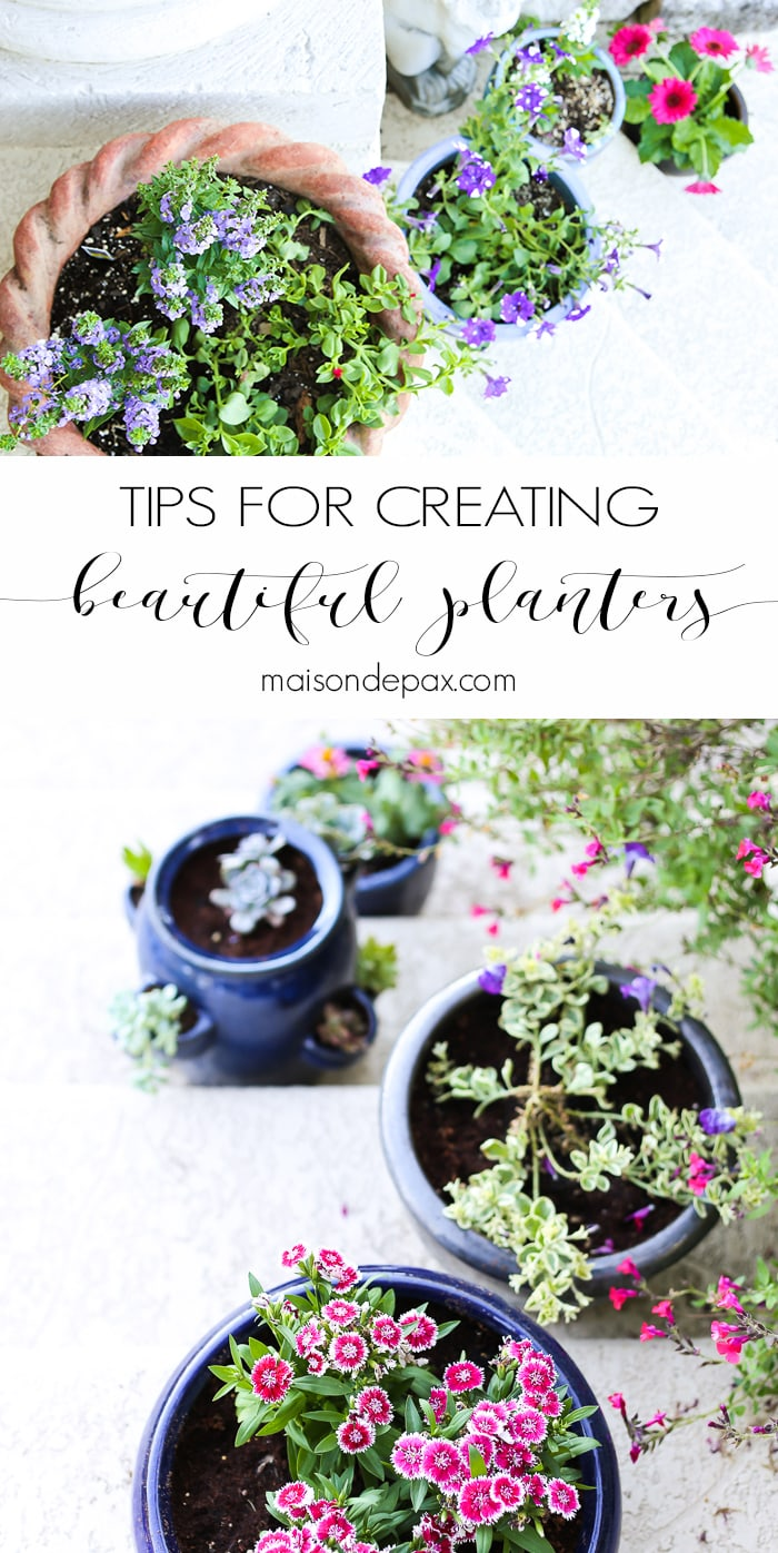 Tips for Creating Pretty Potted Plants- Maison de Pax