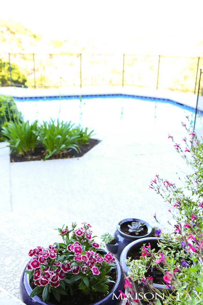 Pool view and porch planters with flowers- Maison de Pax