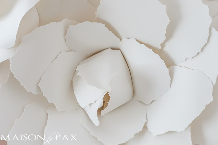 Diy giant paper flowers tutorial maison de pax diy paper flowers incredible learn how to make these gorgeous elegant giant mightylinksfo Images