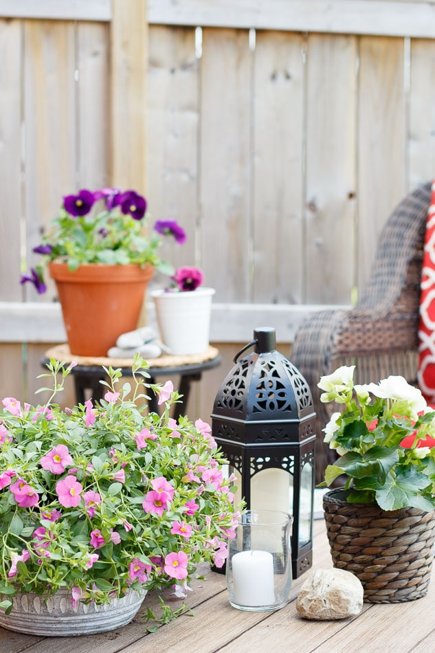 Summer Potted flowers- Maison de Pax