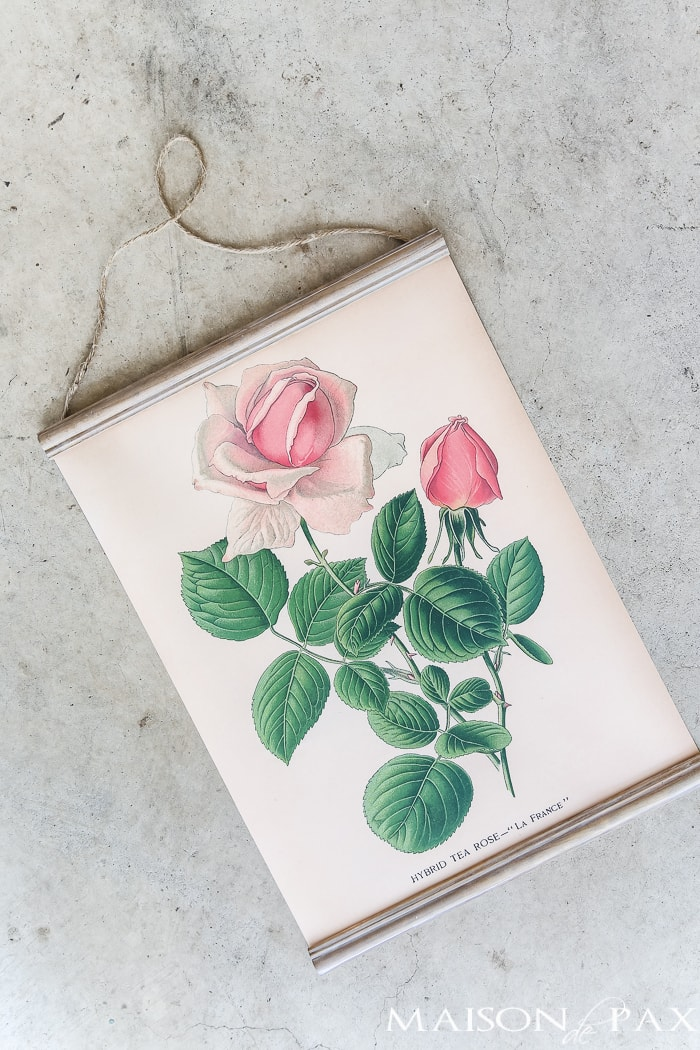 This DIY hanging printable botanical creates a beautiful piece of wall art in no time at all! And you can have your choice of free botanical prints to download.