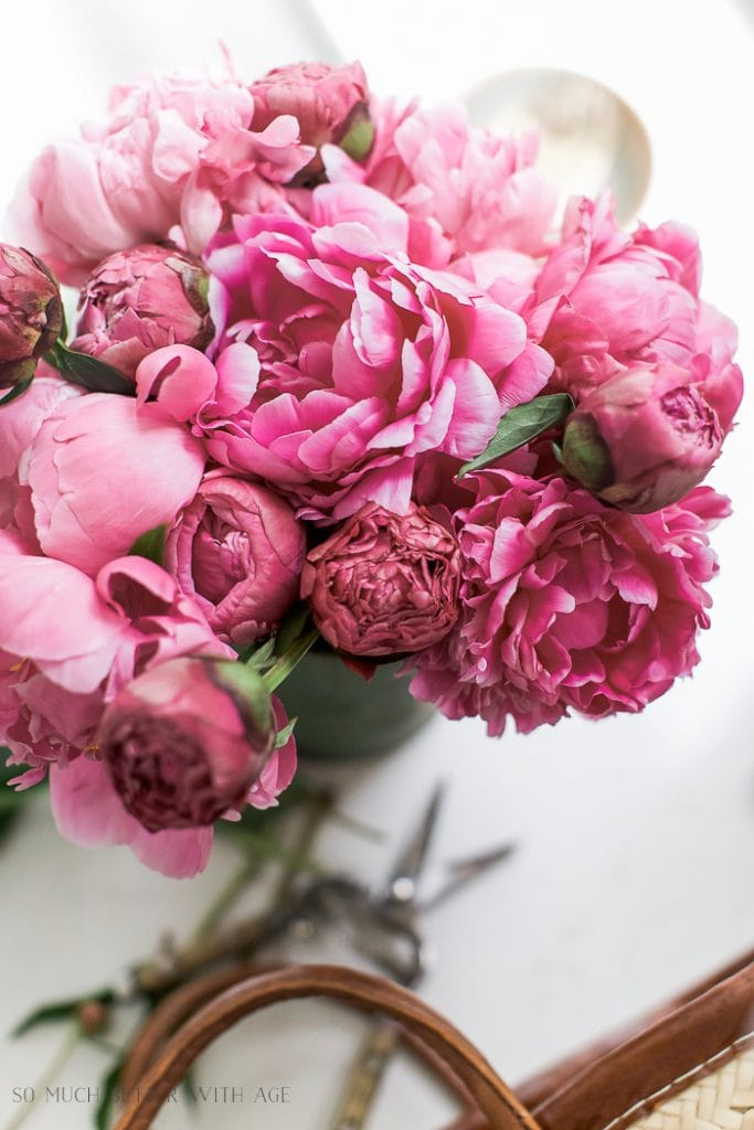 stunning ranunculus create a beautiful, french feel to a space