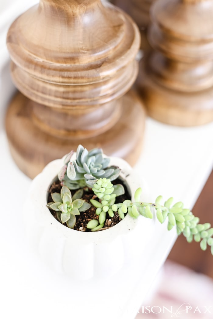 simple, neutral fall mantel decor ideas: mini pumpkins with succulents