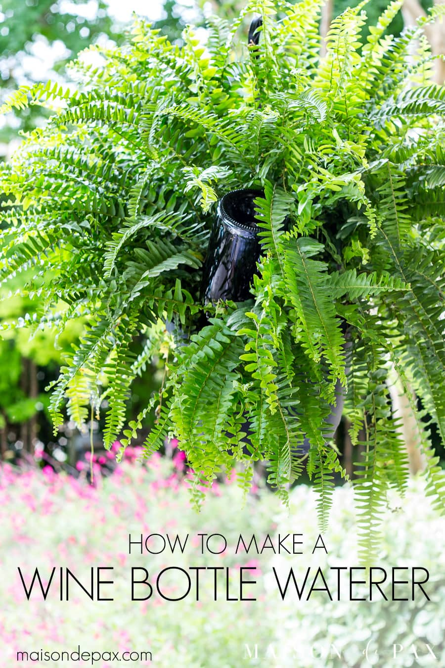 Learn how to make a wine bottle plant waterer to keep your hanging plants healthy and your patio gorgeous this summer! #winebottlewaterer #winebottle #upcycle #garden #gardening #diygardening #hangingplants #bostonfern #summergarden