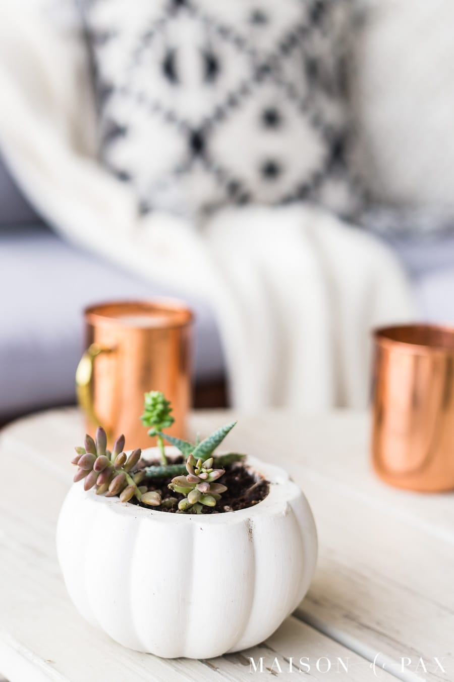learn how to make succulent pumpkin planters! #falldecor #falldecorating #succulents #pumkins #fallporch #outdoorliving #patio