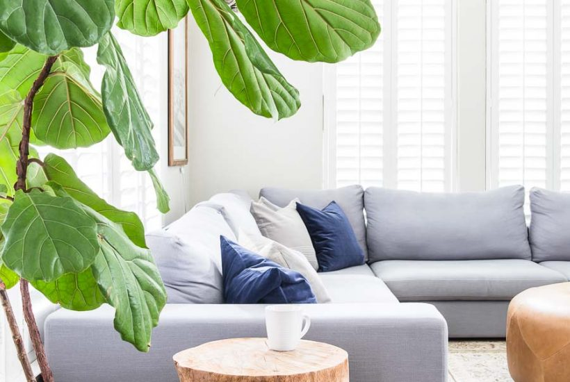 Update your living room for fall with these six EASY steps! #falldecor #falldecorating #easydecorating #10minutedecorating #fallhometour #neutraldecorating