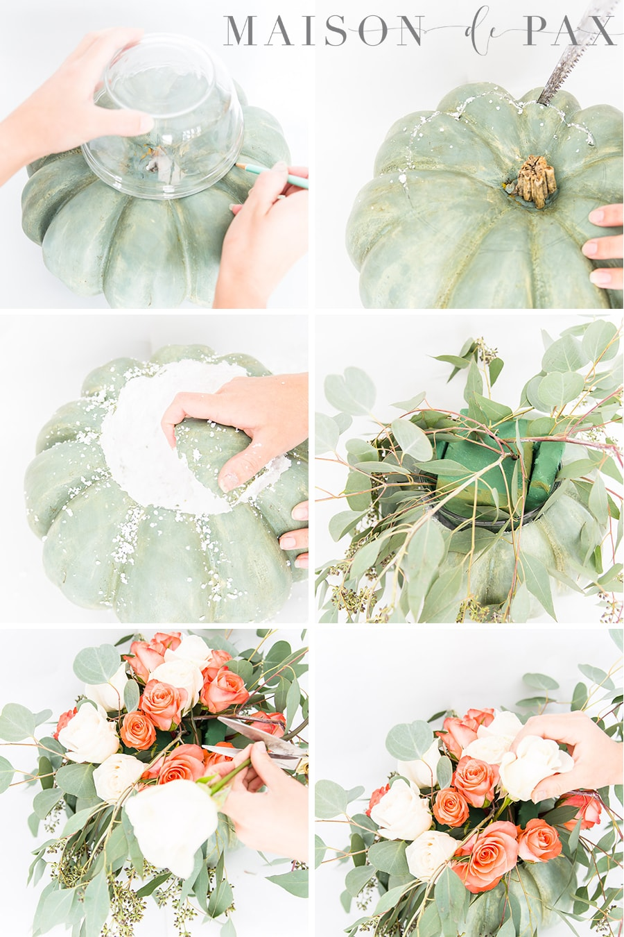 step by step images for turning a pumpkin into a base for fresh flowers