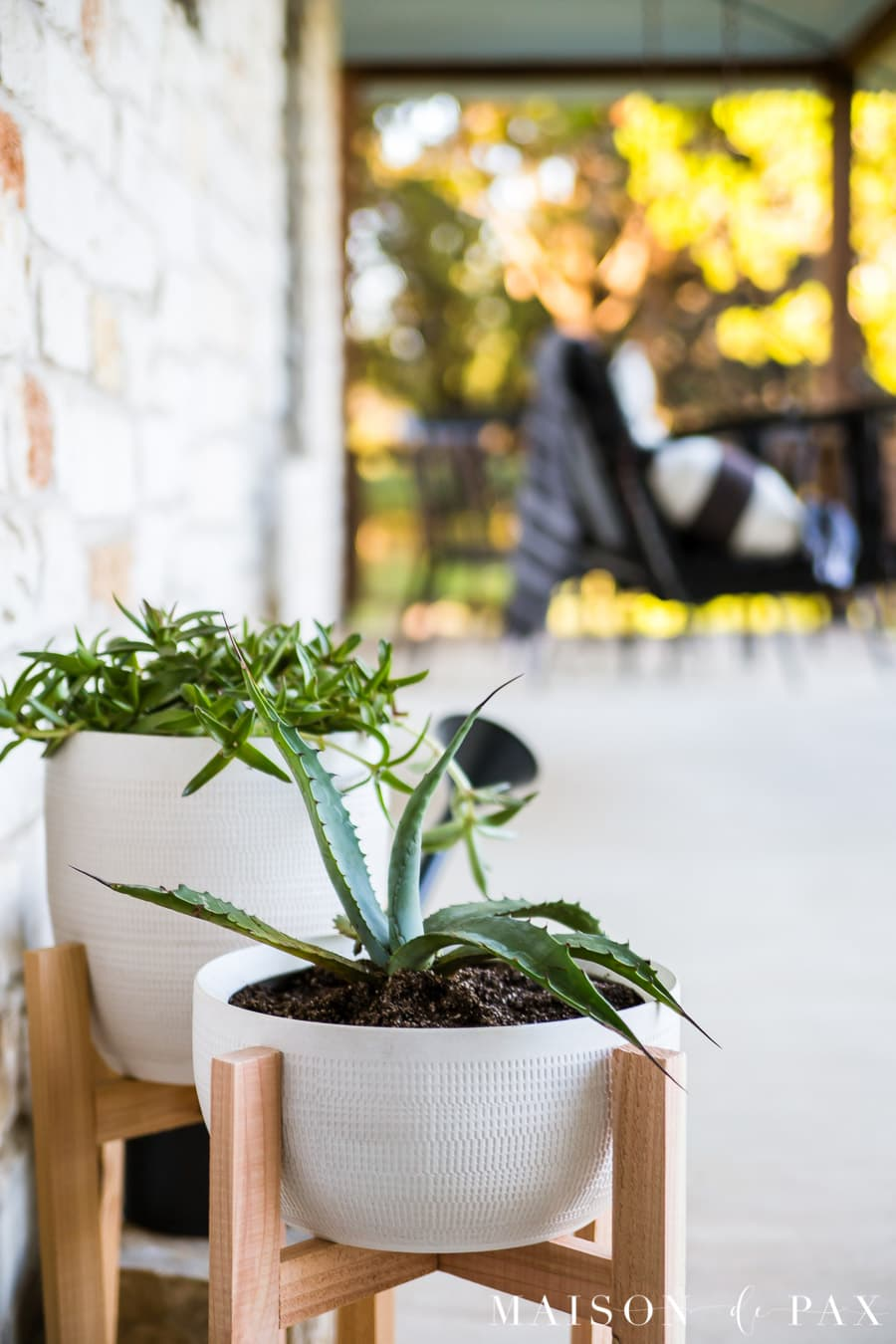 outdoor potted plants with wooden stands and succulent vines | Maison de Pax