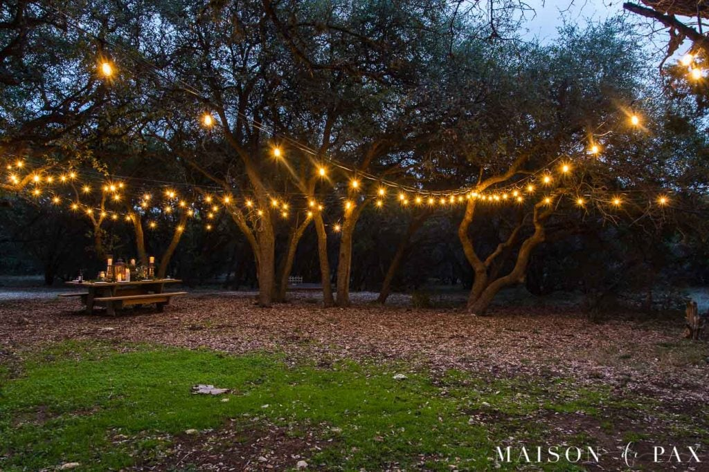 outdoor string lights hung like a circus tent over two open areas surrounded by trees | Maison de Pax