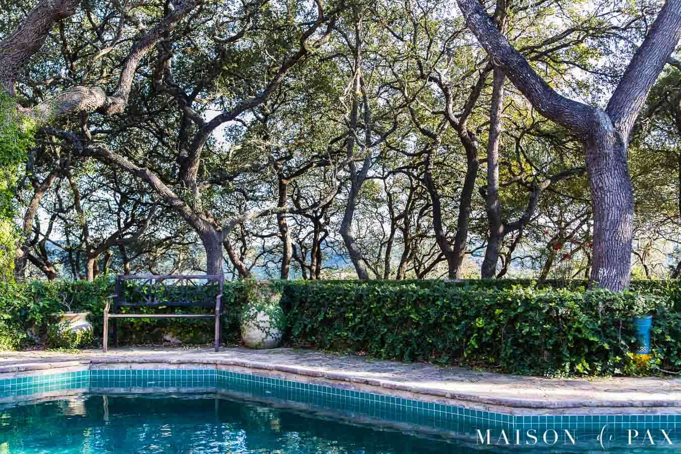 hill country backyard with dark blue pool, stone wall covered with ivy, and views of the hills through the trees