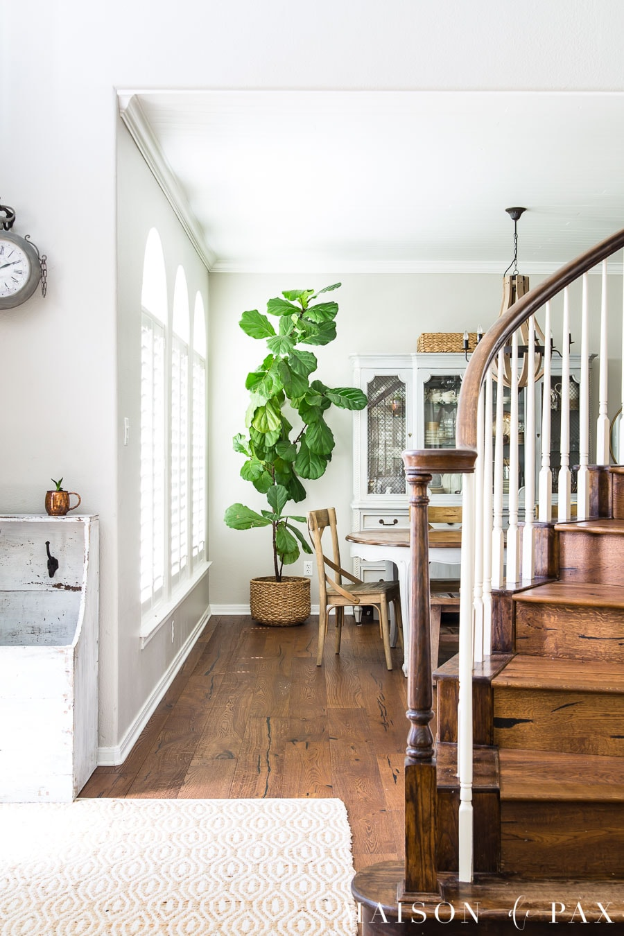 giant fiddle leaf fig tree in dining room | Maison de Pax