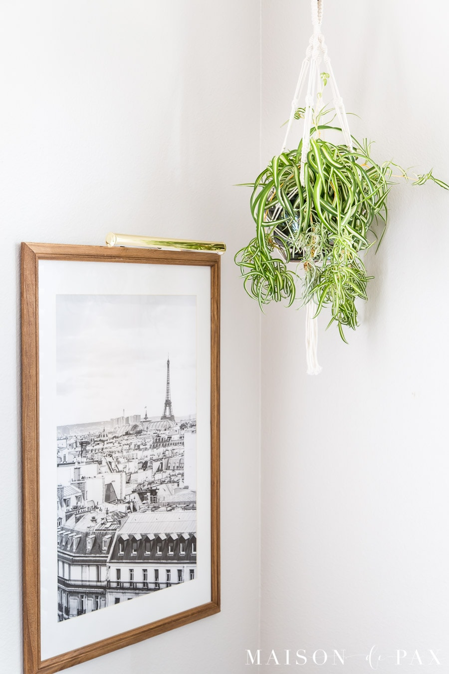 spider plant in silver pot and macrame hanging beside black and white wall art | Maison de Pax