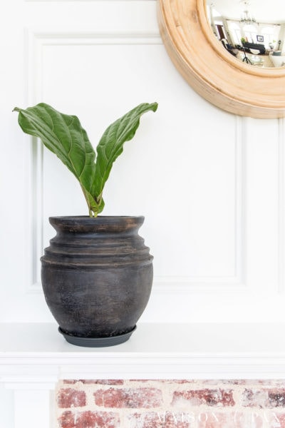 aged black pot with fiddle leaf fig on white mantel | Maison de Pax